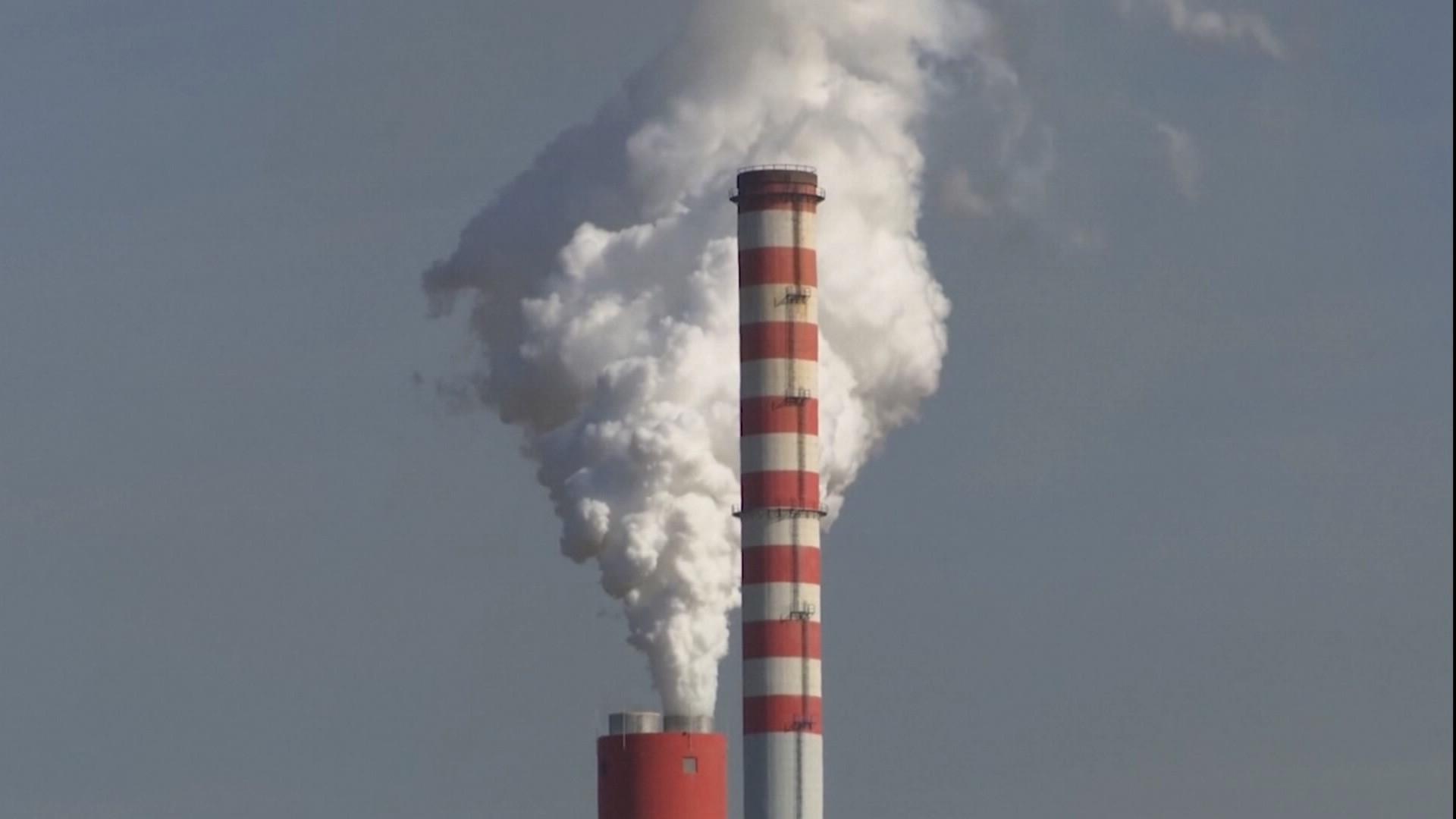環保署預告《溫管法》修法  2050「淨零排放」將入法